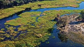 The magnificent Okavango Delta | Peter Walton