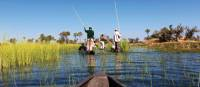 Cruising the Okavango Delta | Peter Walton