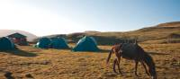 Campsite at Geech in the Simien Mountains | Aran Price