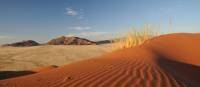 The dunes at Sossusvlei turn shades of apricot at sunrise and crimson at sunset | Andrew Thomasson
