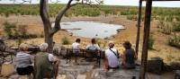 Views from Halali waterhole | Gesine Cheung