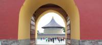 Temple of Heaven, Beijing | Alana Johnstone