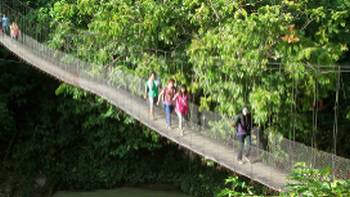 Hikers walking over a jungle bridge