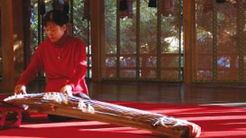 Woman demonstrating the use of a traditional Japanese koto | Maria Visconti