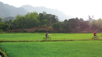 Riding through rice paddies in northern Vietnam | Amanda Fletcher