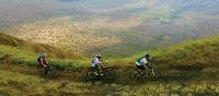 Cyclists riding on a scenic mountain trail