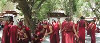 Local Tibetan monks | Hugh Jenkinson