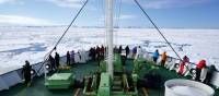 On deck keeping an eye out for Polar Bears | Gesine Cheung