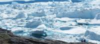 The moving sea of ice at Jakobshavn Glacier in Ilulissat | Rachel Imber