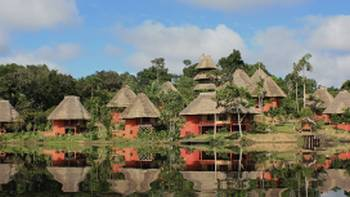 Accommodation at Napo Wildlife Center