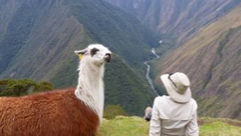 Making new friends on the Inca Trail | Bette Andrews