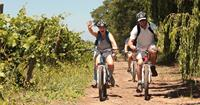 Chile, Soft Adventure Holiday - cycling in Maipo Valley - World Expeditions