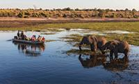 Chobe_River_Botswana_Africa-medium