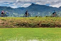Enjoying the ride on the 'Vietnam by Bike' trip. Image credit: Richard I'Anson