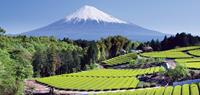 World's Best Mountains: go walking around Mt Fuji, Japan
