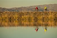 Clients riding along side the beautiful Tekapo canal system on one of our New Zealand cycle journeys. Image credit: Colin Monteath