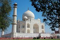 Taj_Mahal_Agra_India-medium(1)