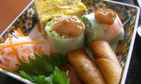 Different types of spring rolls snacks you must try in Vietnam