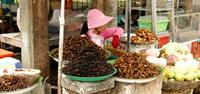 Fried spiders on sale at Skuon market in Cambodia