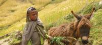 Local child and his donkey in the Simien Mountains | Jan Brownlie