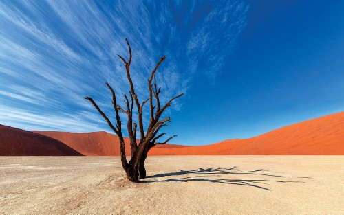 Colours of Deadvlei - <i>Photo: Peter Walton</i>