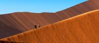 The changing colours of the world's highest sand dunes, Sossusvlei, Namibia | Peter Walton
