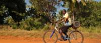 Local boy cycling along a rural road | Bruce Taylor