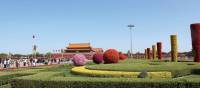 Beautiful gardens around the Forbidden City | Alana Johnstone