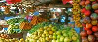 Fruit stall in a vibrant market