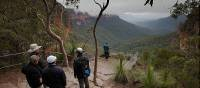 Stop to admire the beauty of the Blue Mountains on a guided walk