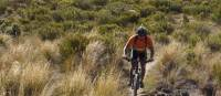 Enjoying the Craigieburn Ranges of Canterbury, New Zealand on the South Island Mountain Bike Adventure | Mike Smith