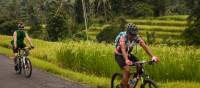 Cycling past rice paddies in Bali | Colin Monteath