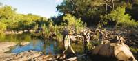 Trekkers follow Barramundi Creek in Kakadu | Aran Price
