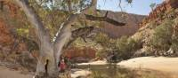 Classic outback country in Australia's Northern Territory | Paddy Pallin