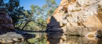 Shady spots and waterholes along the Larapinta | Gavin Yeates