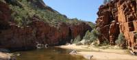 What better way to wash off the day's dust than by taking a dip at Ormiston Gorge | Larissa Duncombe