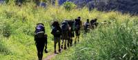 Trekking through the verdant scenery of Papua New Guinea | Ken Harris