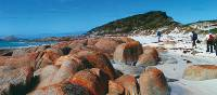 The Bay of Fires in Tasmania's north east | Steve Trudgeon