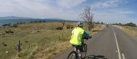 Cycling towards Triabunna along the east coast | Brad Atwal