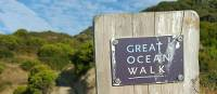 Experience the breathtaking coastal scenery on the Twelve Apostles Walk | Linda Murden