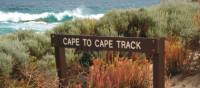 The rugged coastal landscape on our Cape to Cape Trek | Paula Wade
