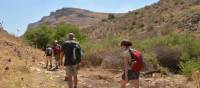 Walking in Galilee's Valley of Doves