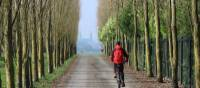 A cyclist on tree lined avenue with Bayeux cathedral in distance | Kate Baker
