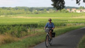 Cycling past vineyards in Bordeaux | Jaclyn Lofts