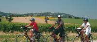 Cycling in Italy is a wonderful experience for all the family | Sue Badyari