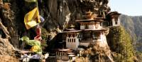Views across to Taktsang Monastery or 'Eagle's Nest' in Bhutan | Liz Light