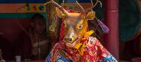 Colourful costumes and parades during festival time in Ladakh | Richard I'Anson