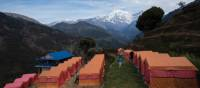 Stay at our exclusive private eco campsite at Landruk in the Annapurna region | Mark Tipple