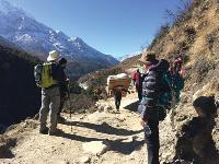 Local guides and trekkers on the trail |  <i>Heike Krumm</i>