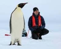 Up close with the majestic Emperor Penguin |  <i>Kyle Super</i>